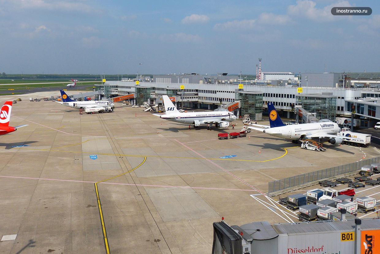 Рейсы из аэропорта Дюссельдорфа