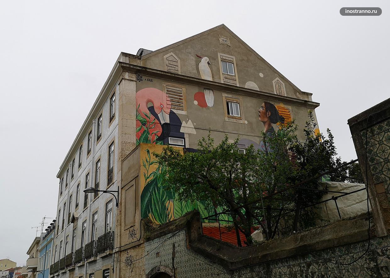Граффити с птицами и попугаем