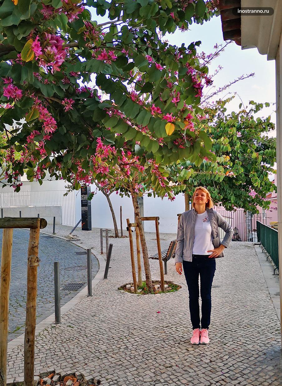 Девушка в Лиссабоне весной
