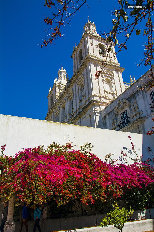 Белая церковь в Португалии