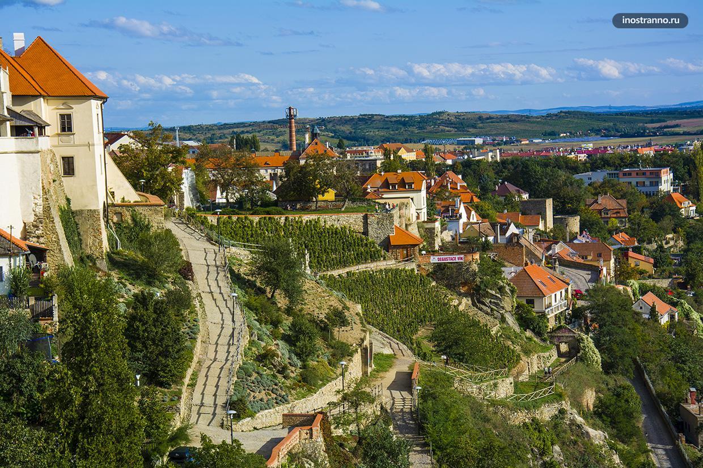 Винодельческий регион в Чехии