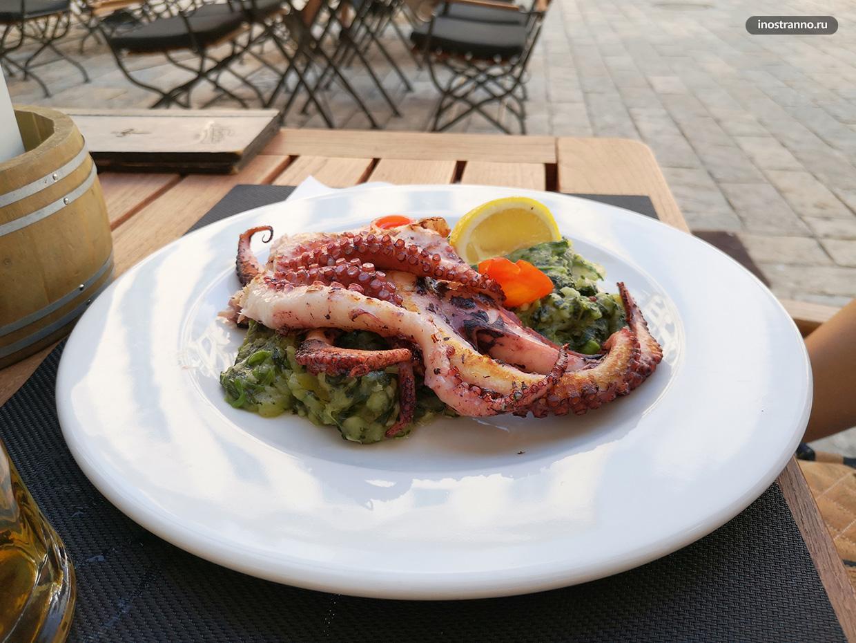 Морепродукты в ресторане в Черногории - осьминог